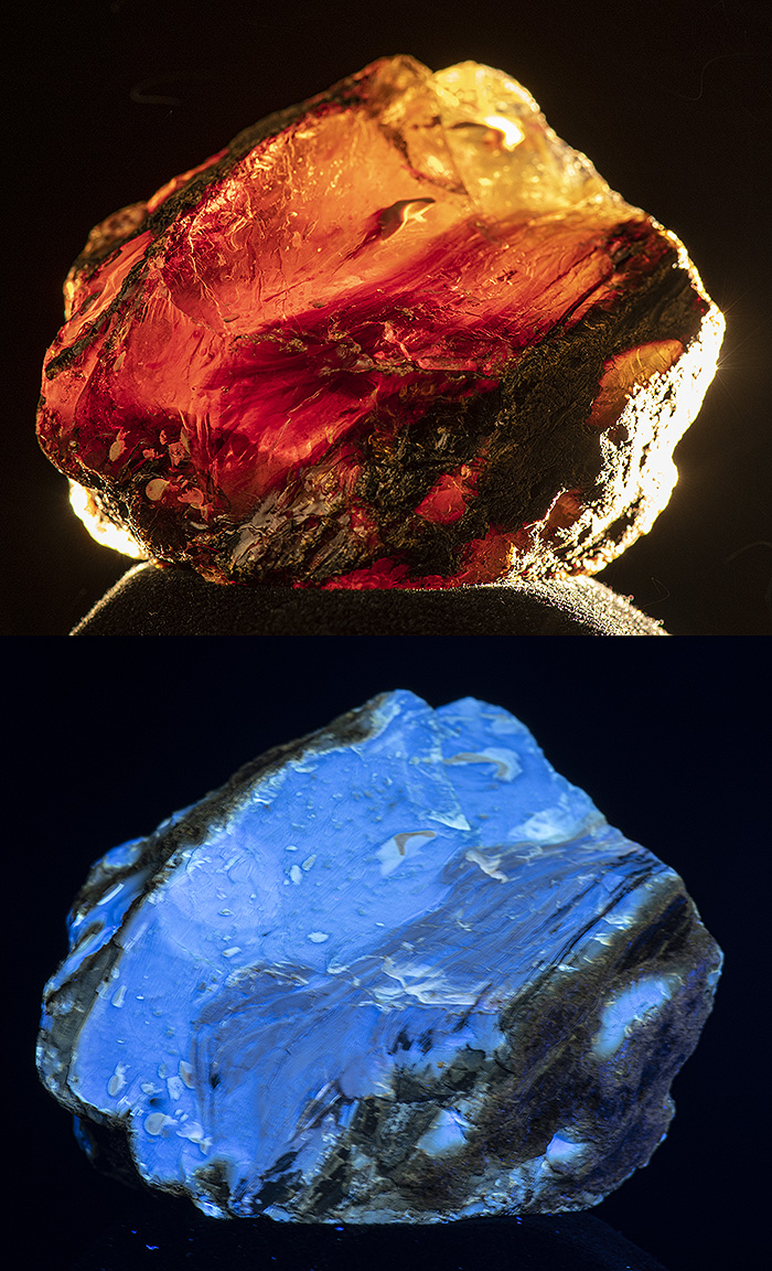 Attached Image: blue amber comp 3.jpg