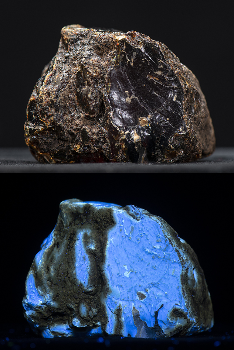 Attached Image: blue amber comp 2.jpg