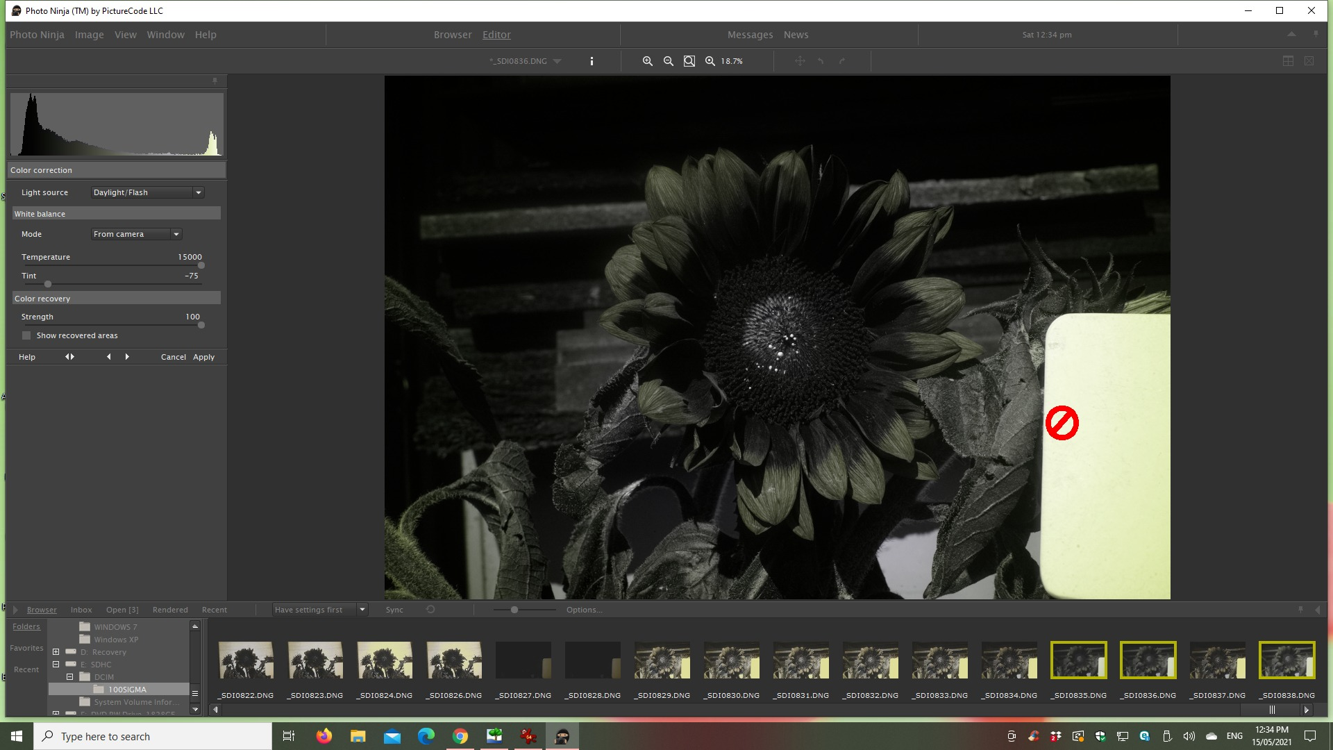 Attached Image: 2021 05 15 Sunflower, Canon 40mm, SEU3 + S8612 CWB in camera.jpg