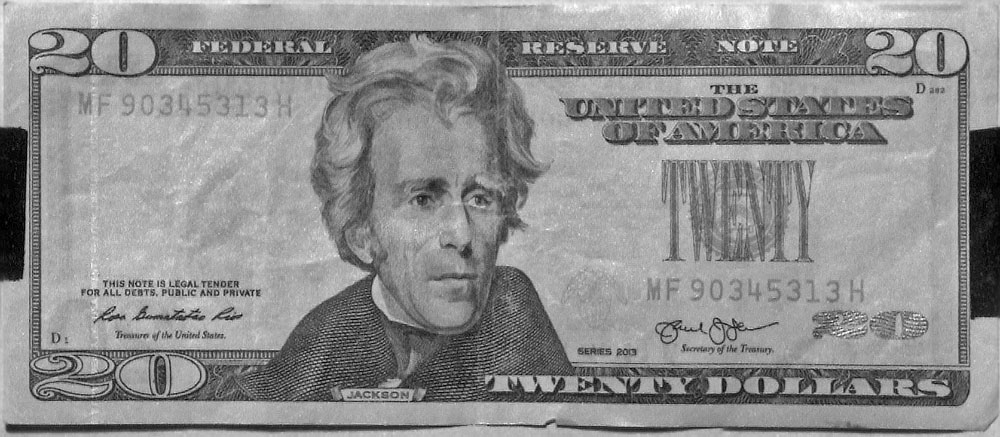 Attached Image: Twenty dolllar bill SWIR front_res UVP.jpg