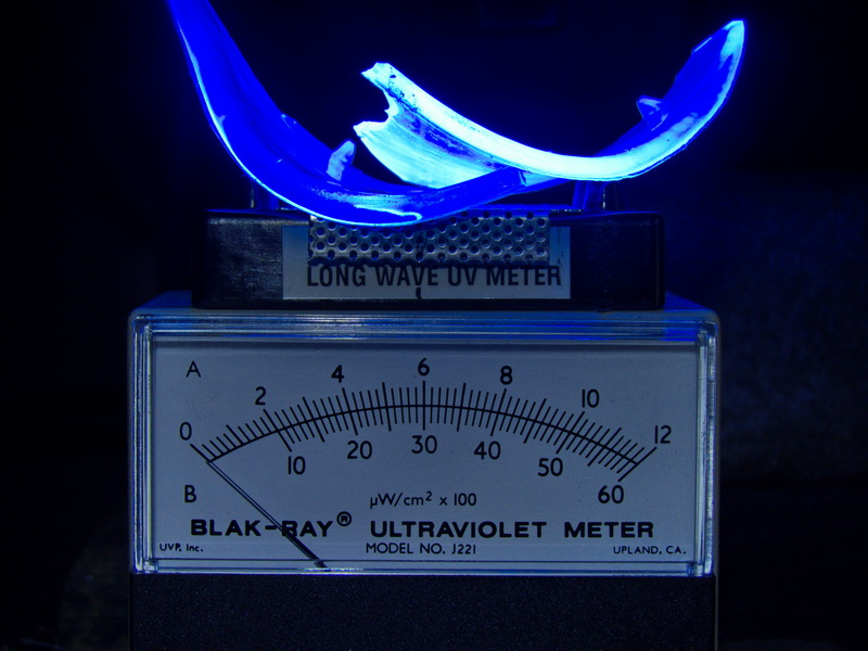 Attached Image: UV meter & sides of polycarbonate goggles©DNoe_resize.jpg