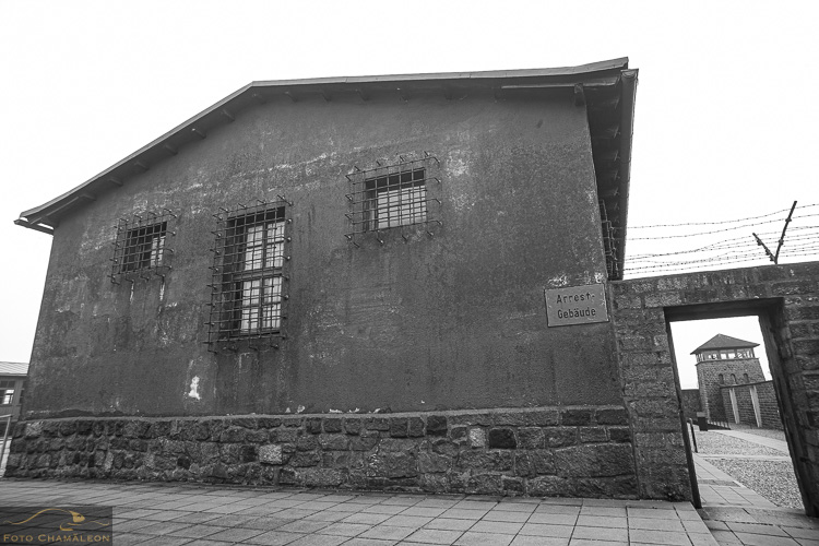 Attached Image: 20201101_Mauthausen_UV_0052.jpg