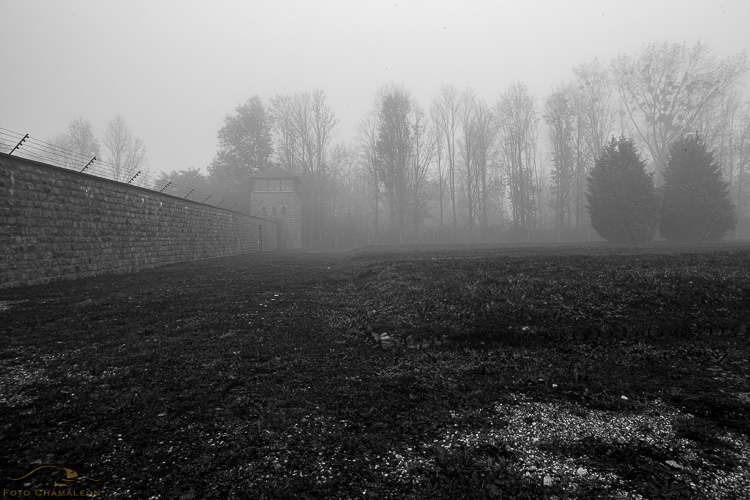 Attached Image: 20201101_Mauthausen_UV_0028.jpg
