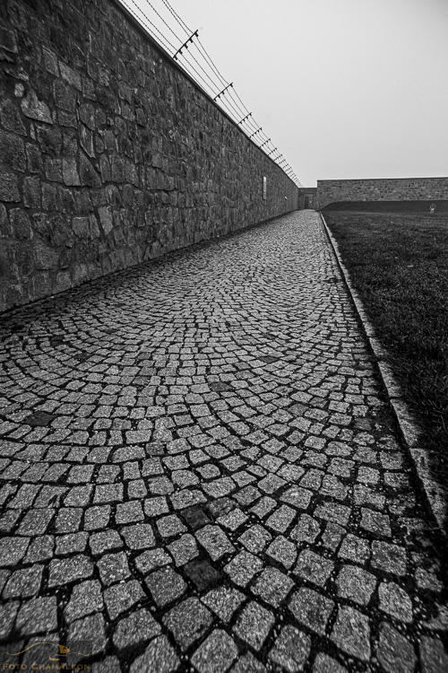 Attached Image: 20201101_Mauthausen_UV_0063.jpg