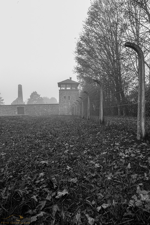 Attached Image: 20201101_Mauthausen_UV_0035.jpg