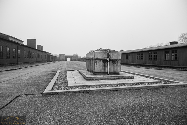 Attached Image: 20201101_Mauthausen_UV_0059.jpg
