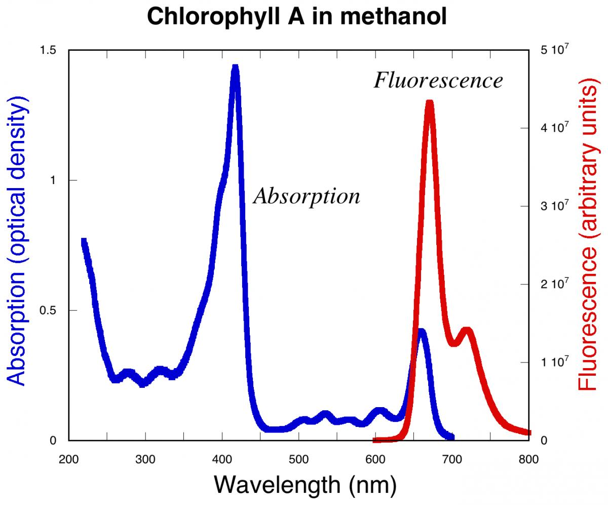 Attached Image: Chlorophyll_spectra.jpg